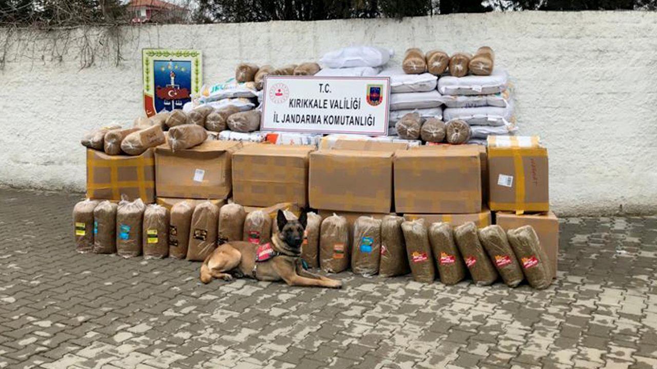 3 ton kaçak tütün ele geçirildi