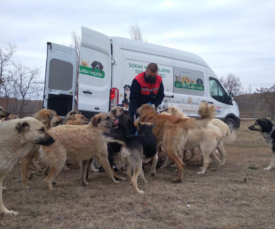 TÜPRAŞ'TAN sokak hayvanlarına yiyecek desteği